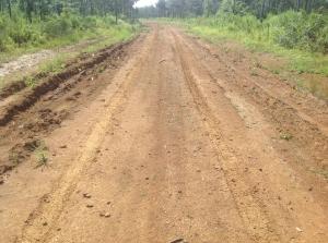 Weyerhaueser Untreated Road